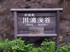 川浦渓谷看板.JPG